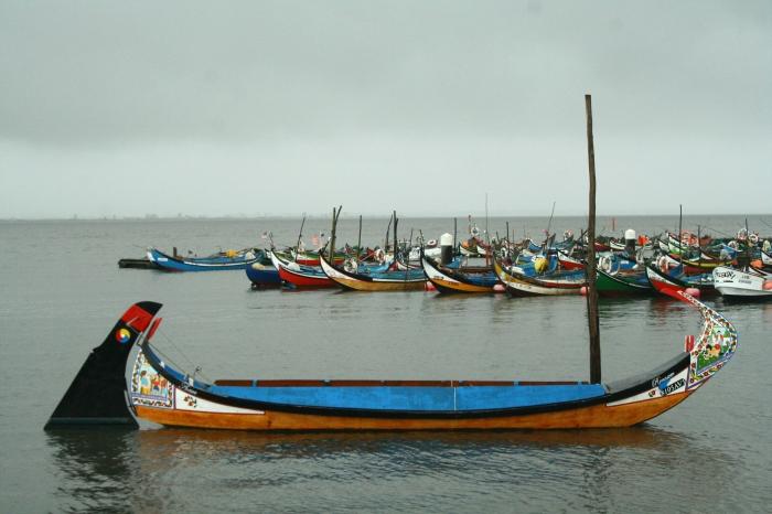 barcos_moliceiros